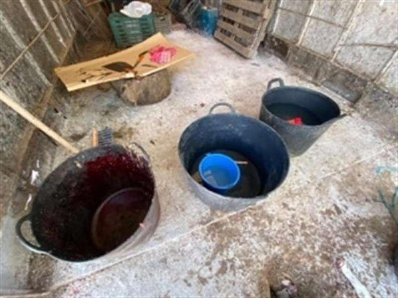 Imagen de una zona del matadero clandestino descubierto por la Policía Local de Elche. EFE/Policía