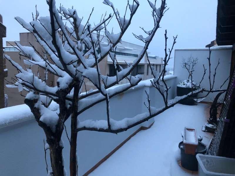 Ontinyent nevado. EPDA