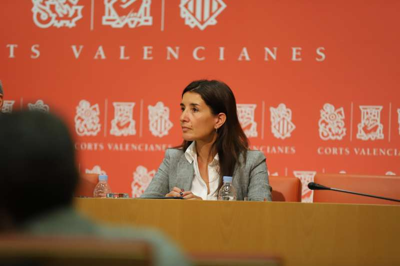 La síndica de Ciudadanos en Les Corts Valencianes, Ruth Merino.