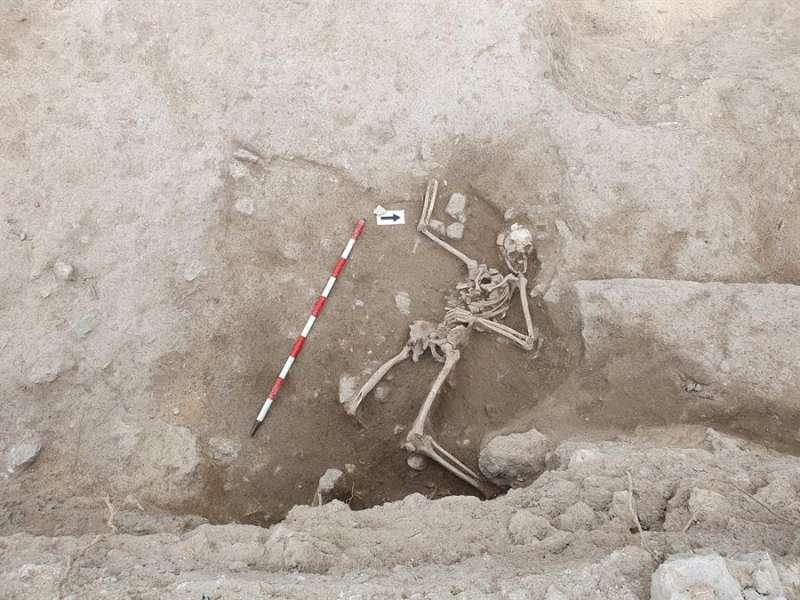Fotografía facilitada por el Ayuntamiento de Guardamar de los restos óseos hallados en el Castell de Guardamar.