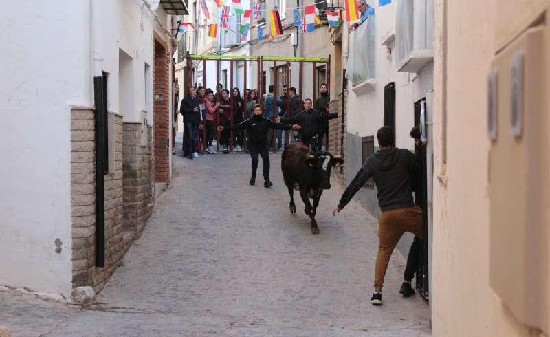 Vaquilla por la calle Mayor de Segorbe