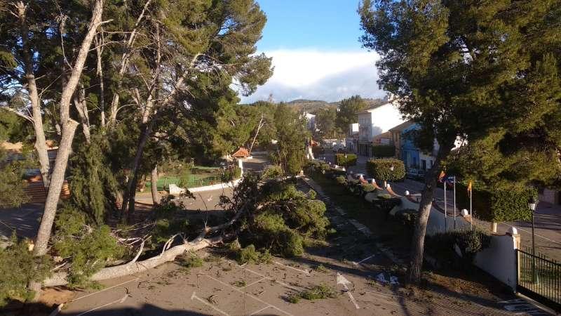 Els Pins de Estivella, donde han caído varios árboles esta mañana. EPDA
