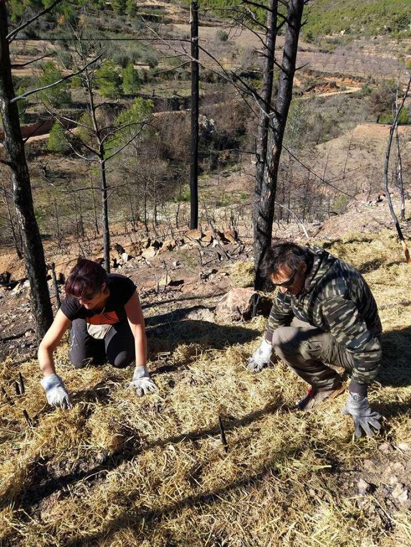 Un equipo de voluntarios limpia el monte quemado de Gátova
