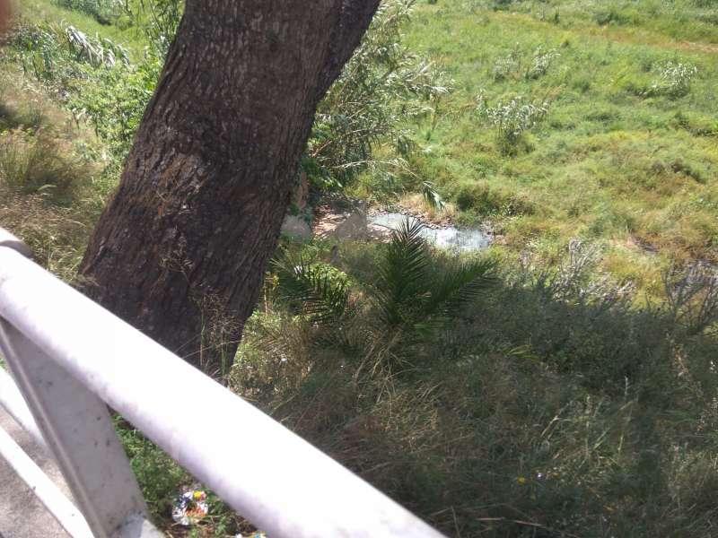 Vertido de aguas fecales en el barranco del Poyo.