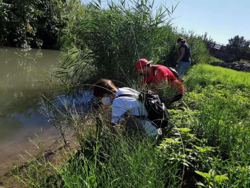 Actividad de seguimiento de tortugas en el río.