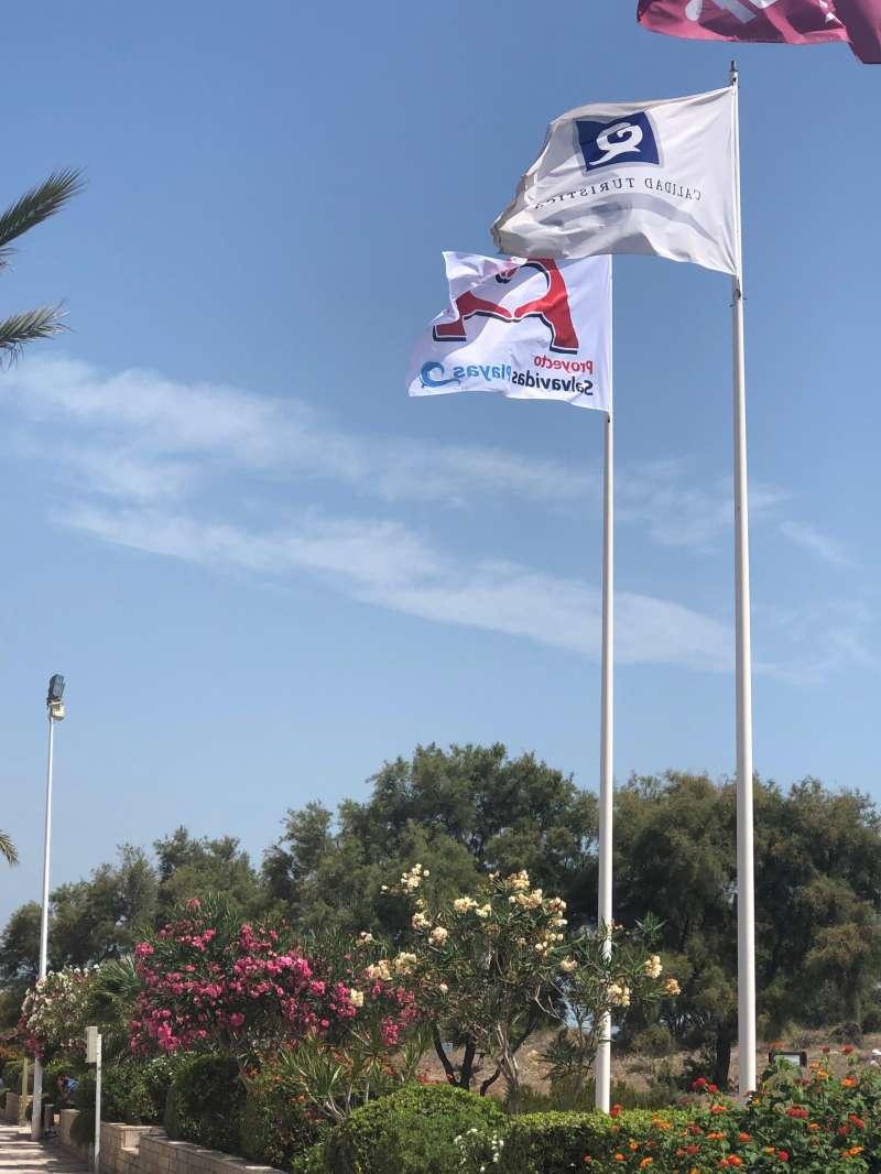 Banderas en la playa