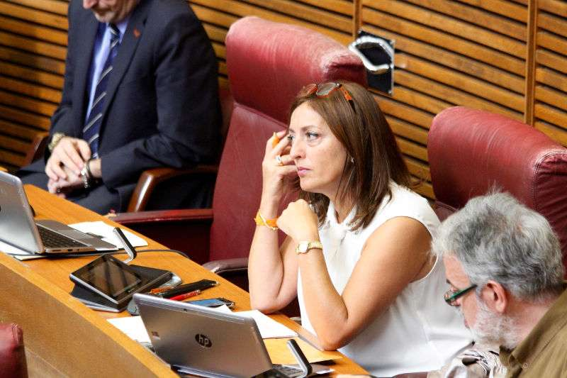 La diputada de Ciutadans (C?s) en Les Corts valencianes, Rosa García