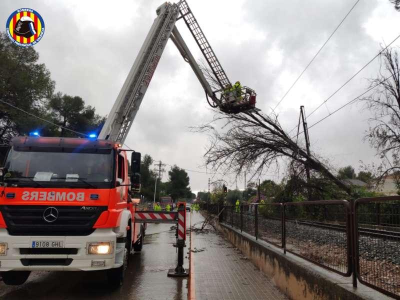 Los bomberos tratan de retirar el árbol. EPDA