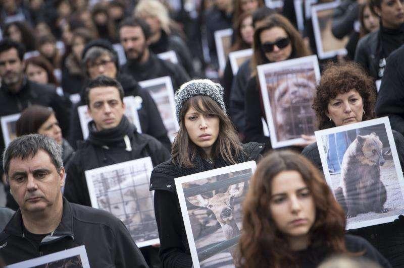 Activistas de Igualdad Animal han mostrado animales muertos y fotografías de animales maltratados para reclamar sus derechos. EFE/Archivo