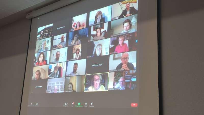 Un momento de la reunión digital. EPDA
