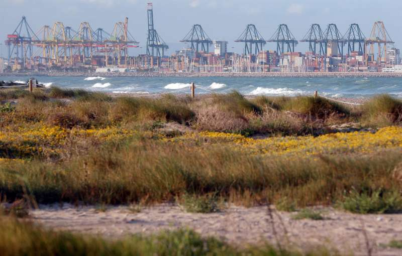 Vista general del Puerto de Valencia desde la playa de El Saler, al sur del puerto. EFE