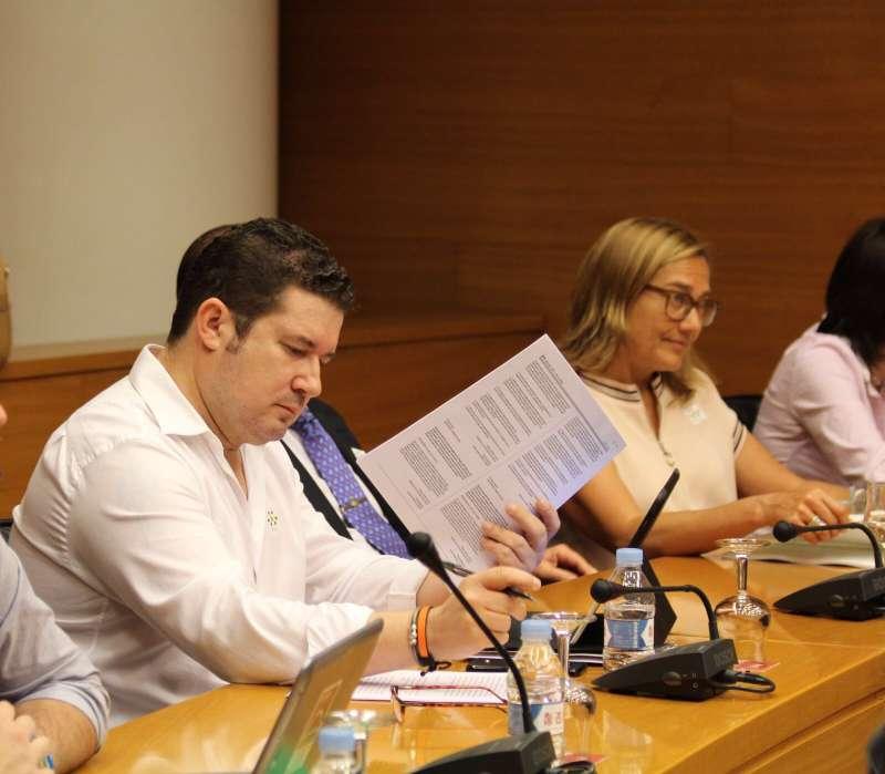El diputat de Ciutadans (Cs) en Les Corts Valencianes, Emilio Argüeso