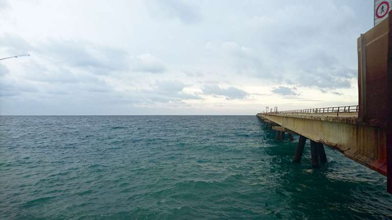 Estado actual del Pantalán de Port de Sagunt. EPDA