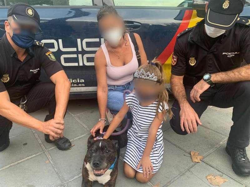 El perro que fue arrollado, en una imagen compartida por la Policía.