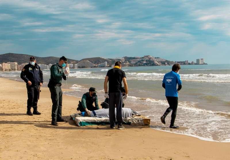 Esta mañana ha aparecido un delfín desorientado en la bahía de Cullera, que ha sido rescatado y devuelto al mar por el equipo de veterinarios del Oceanogràfic, Guardia Civil y Seprona, y la Policía Local. EFE