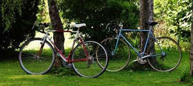 Bicicletas en un parque