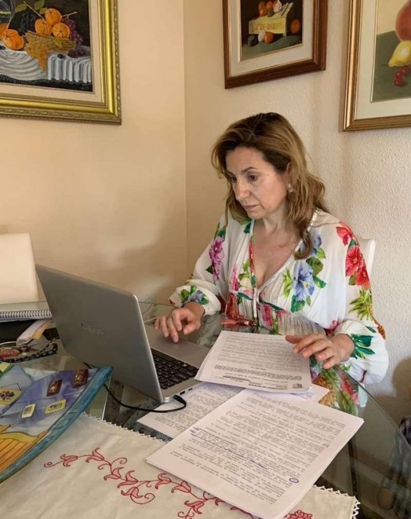 María Villajos participa en un pleno telemático en Paterna. EPDA