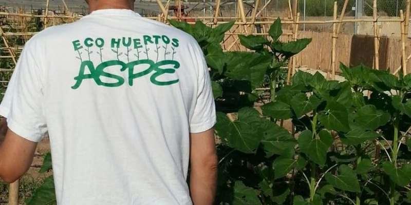 Eco-huertos/EPDA