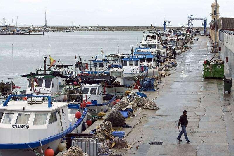 Flota pesquera amarrada en el puerto de Gandía, debido al fuerte temporal registrado en la zona. EFE/Archivo