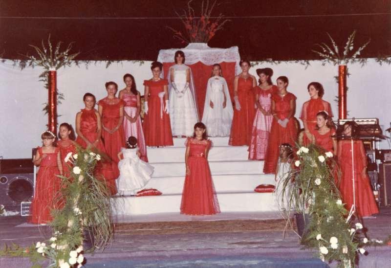 Musicales 1981. / JSM