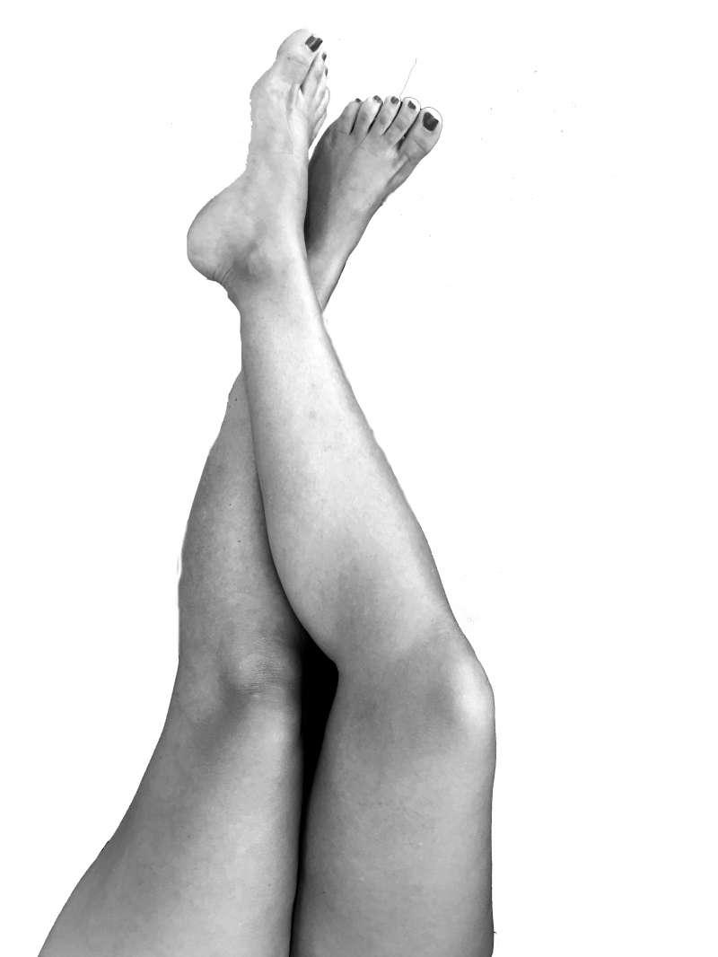 Les cames de Laia.