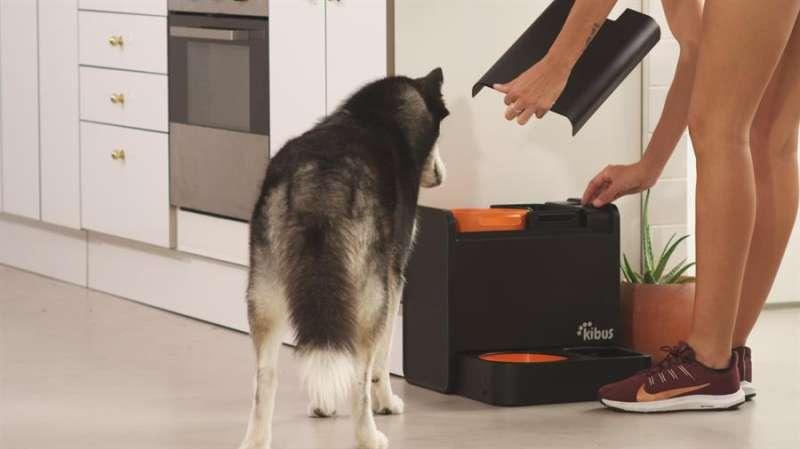 El electrodoméstico para la alimentación de los canes, en una imagen compartida por sus impulsores.