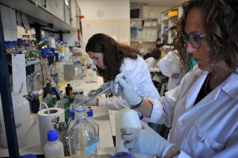 En el concurso participan científicos predoctorales que realizan sus investigaciones en un centro del CSIC. / CSIC Comunicación