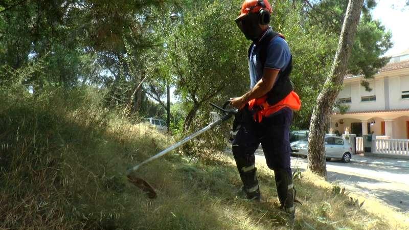 Trabajos de limpieza en Torrent. EPDA
