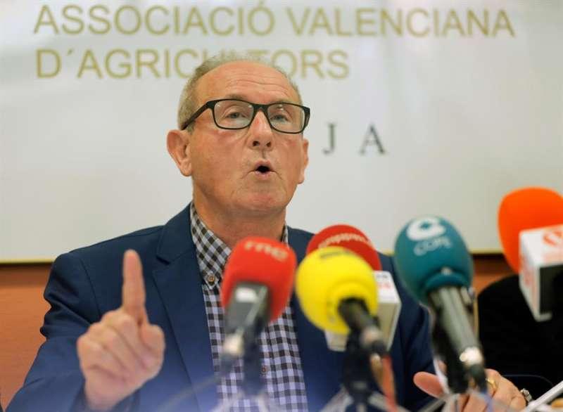 El presidente de AVA, Cristóbal Aguado, en una imagen de archivo. EFE