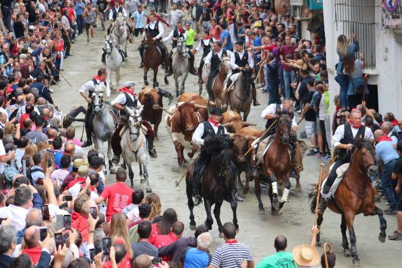 El toro se llevó la bota del jinete (en el suelo) y el caballo suelto
