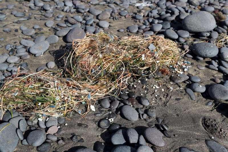En la imagen, fragmentos de plástico que deposita la marea en la playa. EFE/Elvira Urquijo A./Archivo