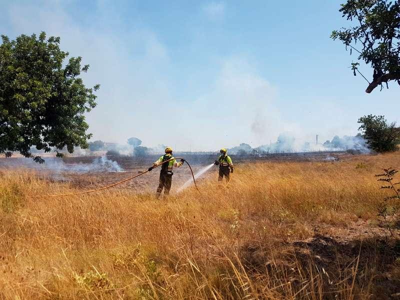 Los bomberos durante las tareas de extinción del fuego. / EPDA