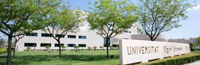 Universidad de Alicante. EPDA
