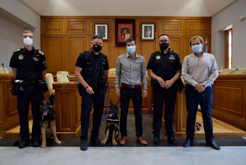 Los perros visitan las dependencias municipales de Burjassot. EPDA