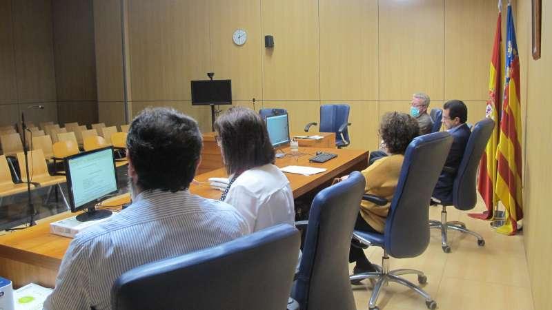 Videoconferencia celebrada ayer miércoles en el juzgado de guardia de detenidos de Valencia. EPDA