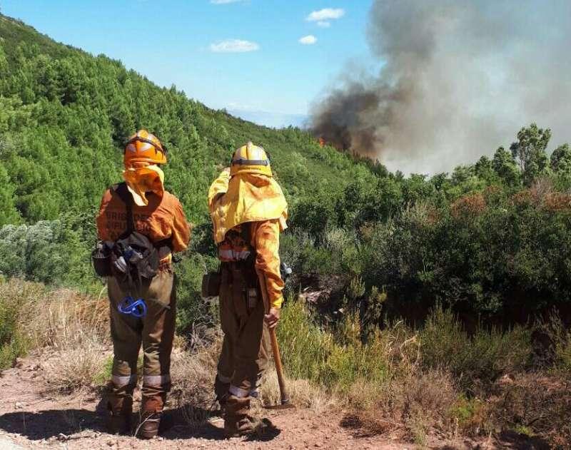 Más de 300 personas luchan contra el fuego en la Serra Calderona. (foto Divalterra)