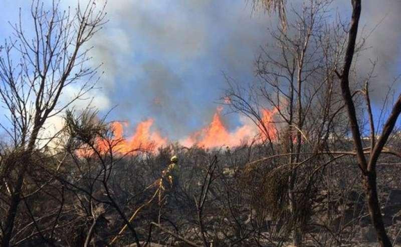 Imagen de archivo de un incendio forestal en la Comunitat Valenciana. EPDA.