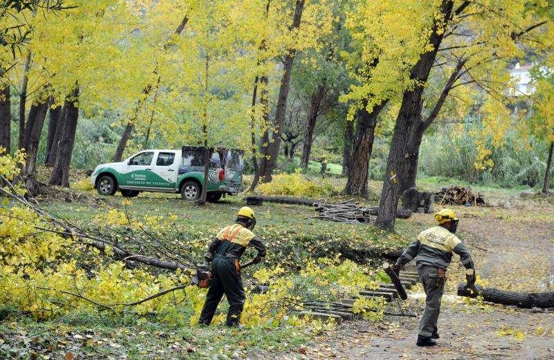 Dos operarios trabajan en una zona boscosa de Chulilla. EFE/Archivo
